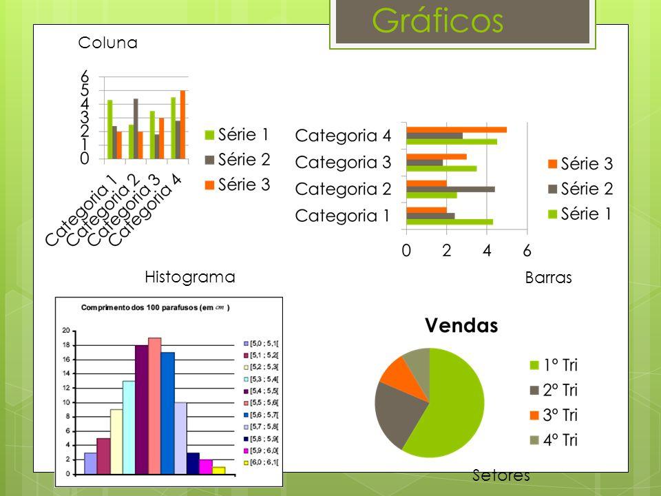Gráficos Coluna Histograma Barras Setores