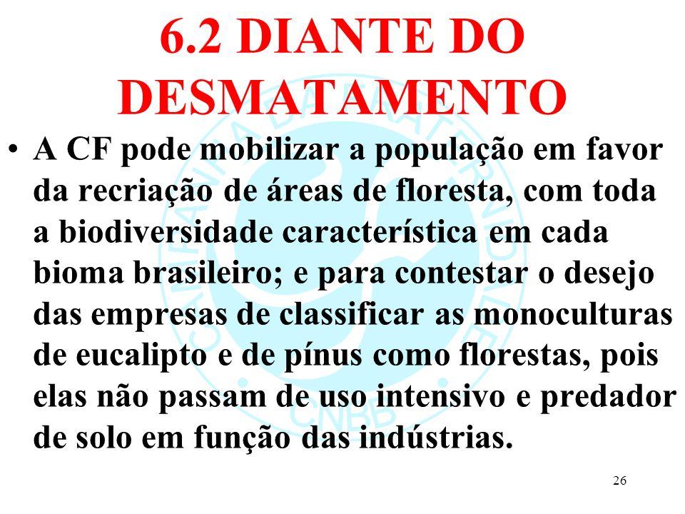 6.2 DIANTE DO DESMATAMENTO