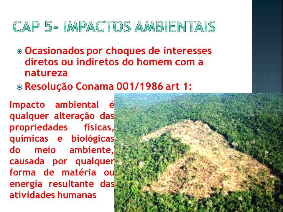Cap 5- impactos ambientais