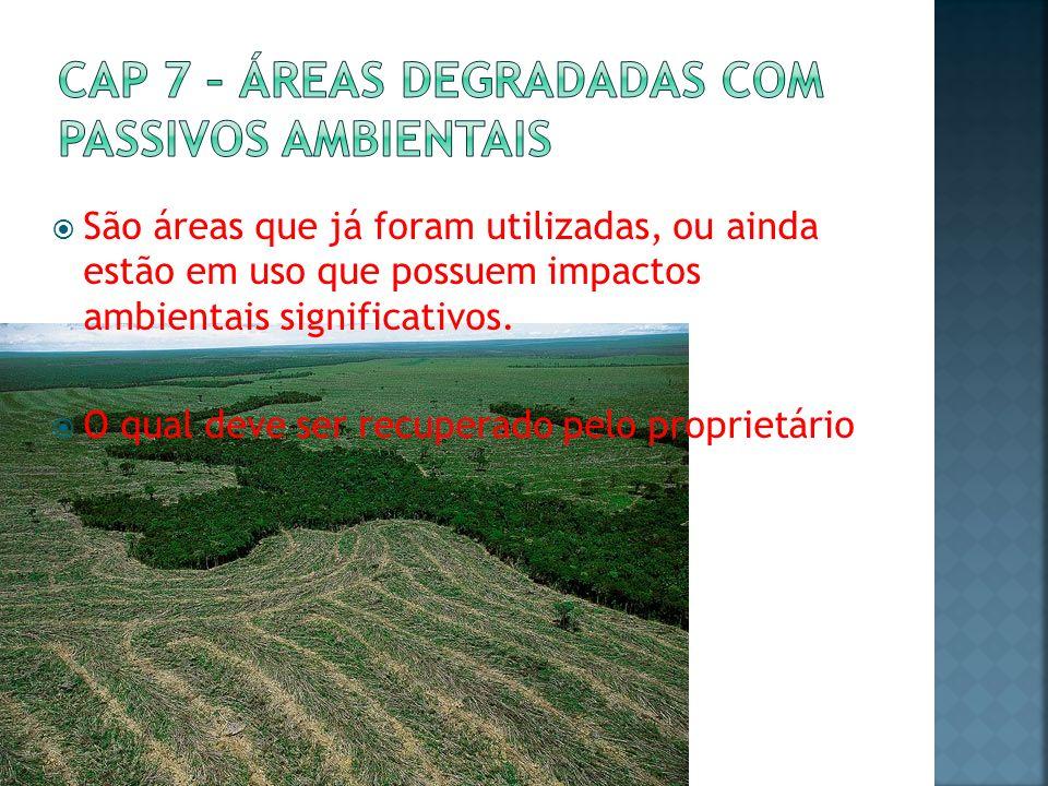 Cap 7 – Áreas degradadas com passivos ambientais