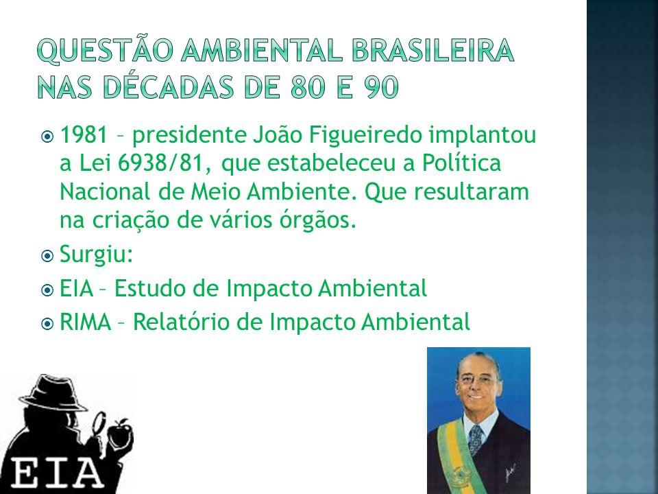 Questão ambiental brasileira nas décadas de 80 e 90