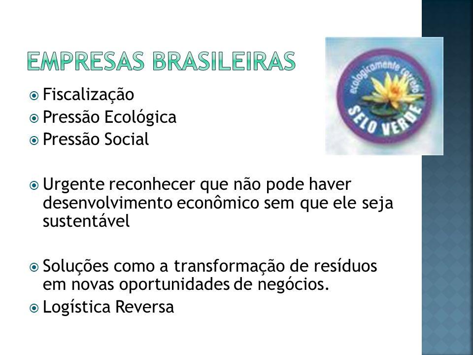 Empresas Brasileiras Fiscalização Pressão Ecológica Pressão Social