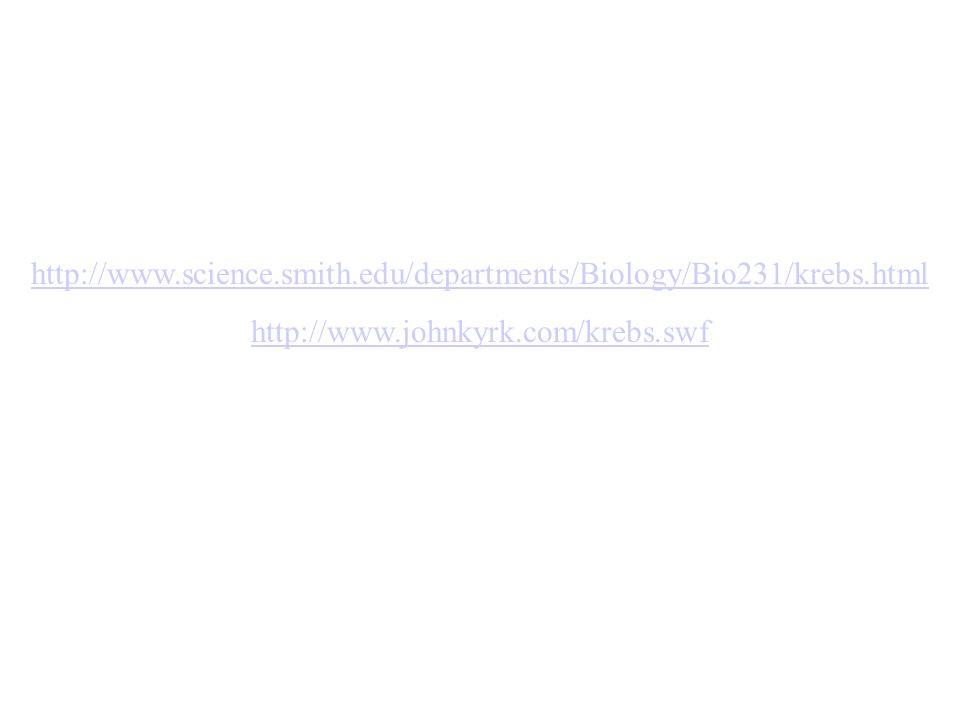 http://www.science.smith.edu/departments/Biology/Bio231/krebs.htmlhttp://www.johnkyrk.com/krebs.swf.