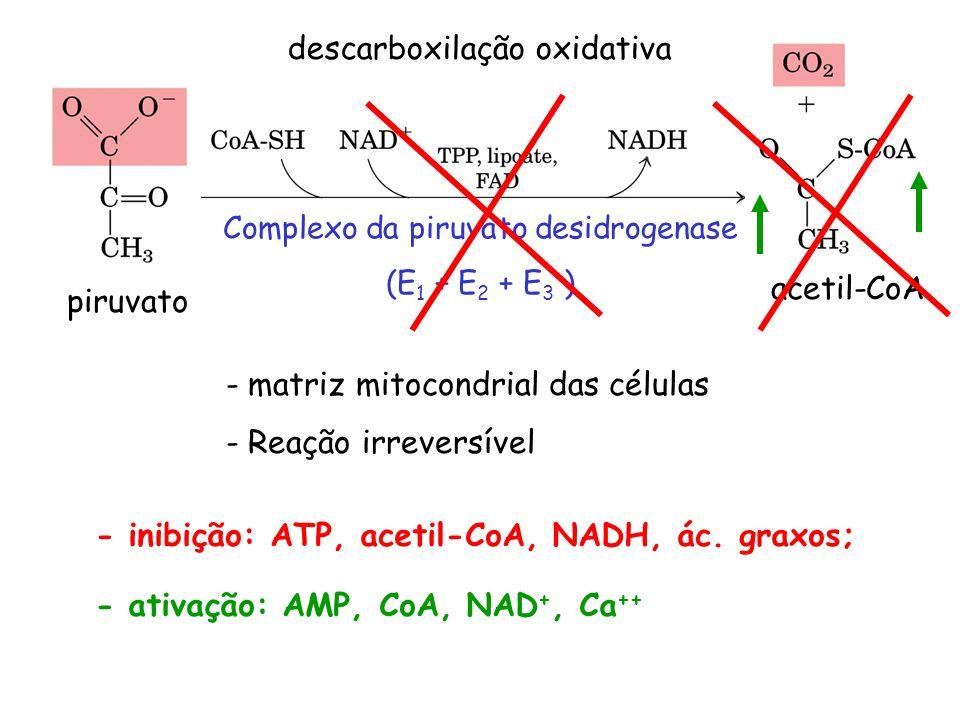 descarboxilação oxidativa