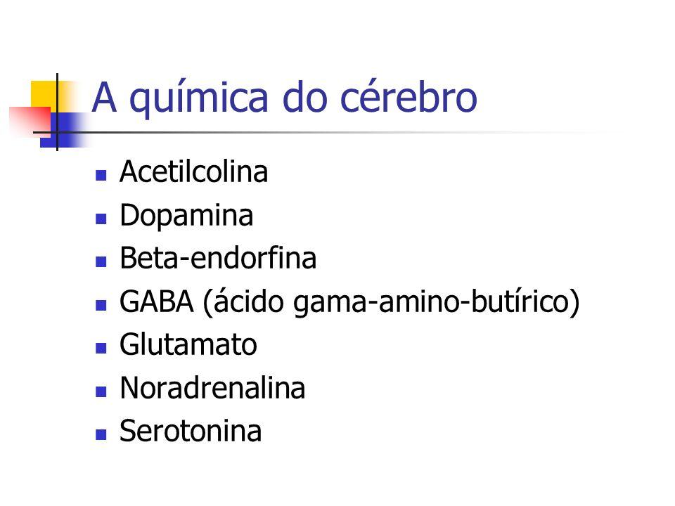 A química do cérebro Acetilcolina Dopamina Beta-endorfina