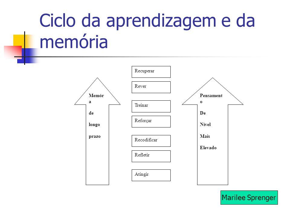 Ciclo da aprendizagem e da memória