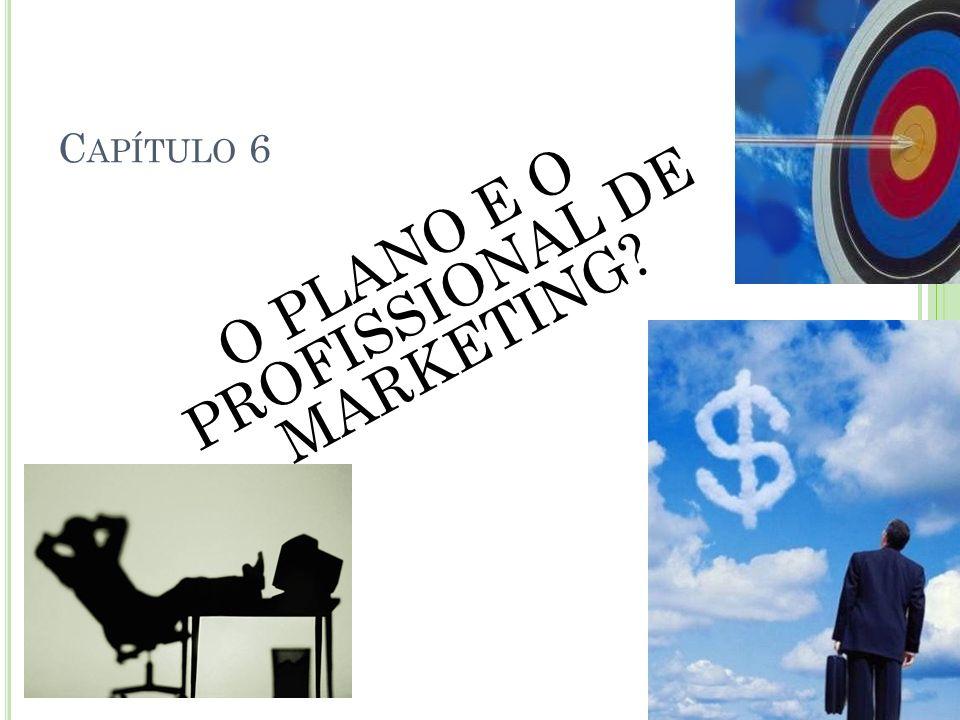O PLANO E O PROFISSIONAL DE MARKETING