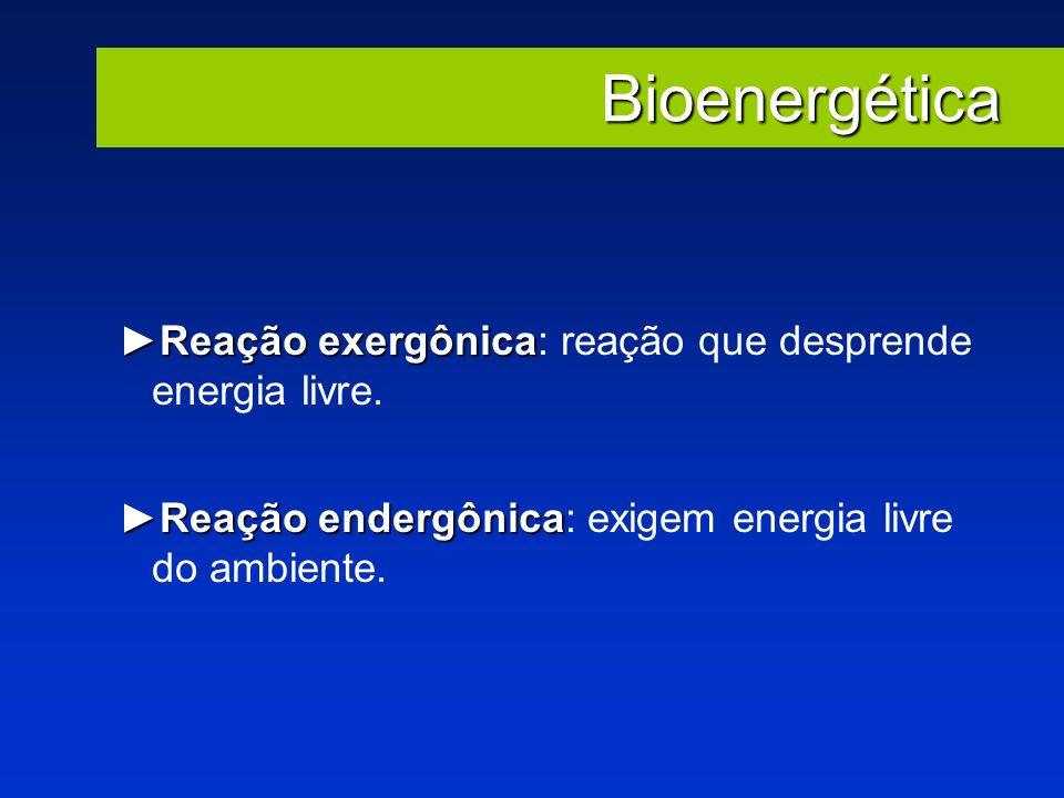 Bioenergética Reação exergônica: reação que desprende energia livre.