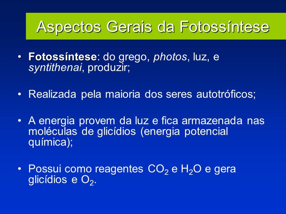Aspectos Gerais da Fotossíntese