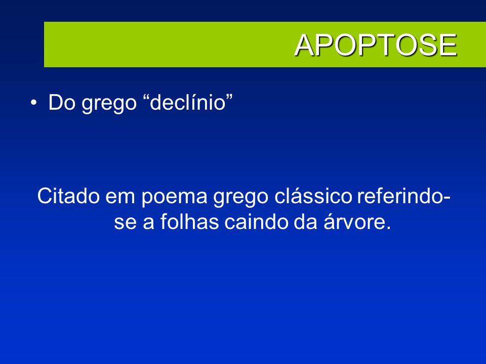 Citado em poema grego clássico referindo-se a folhas caindo da árvore.
