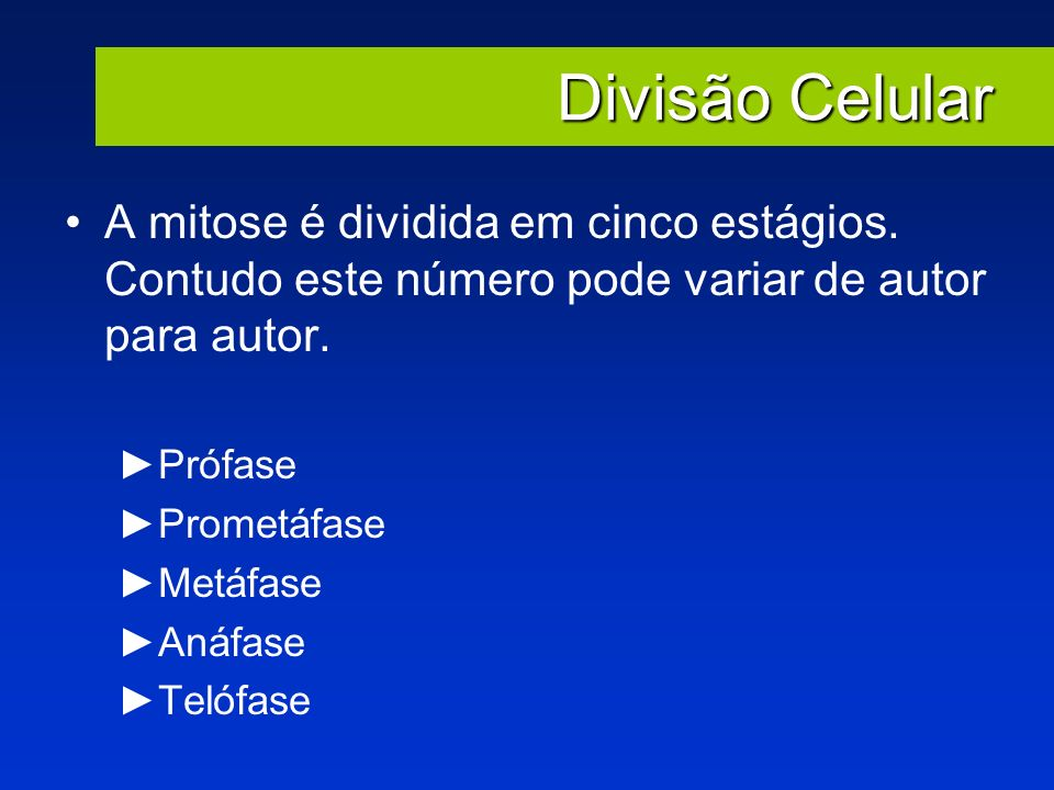 Divisão Celular A mitose é dividida em cinco estágios. Contudo este número pode variar de autor para autor.