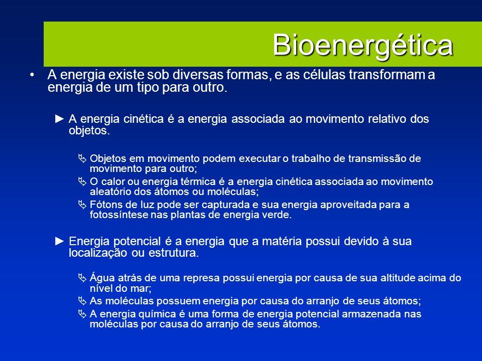 Bioenergética A energia existe sob diversas formas, e as células transformam a energia de um tipo para outro.