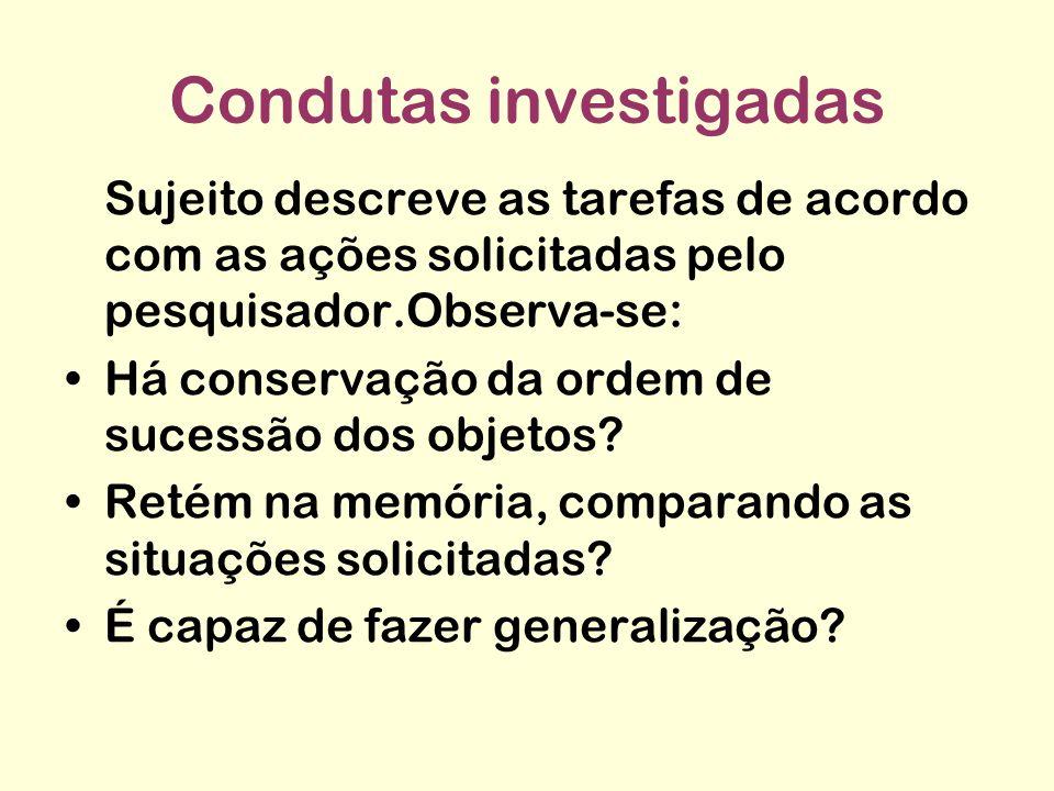 Condutas investigadas