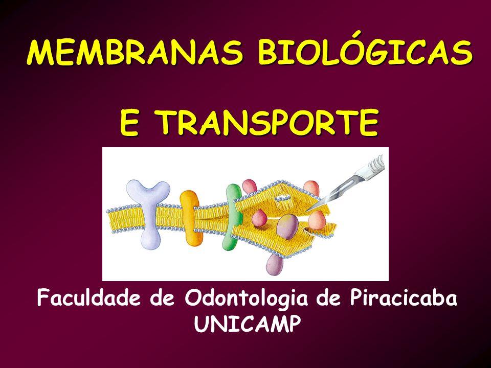 MEMBRANAS BIOLÓGICAS E TRANSPORTE