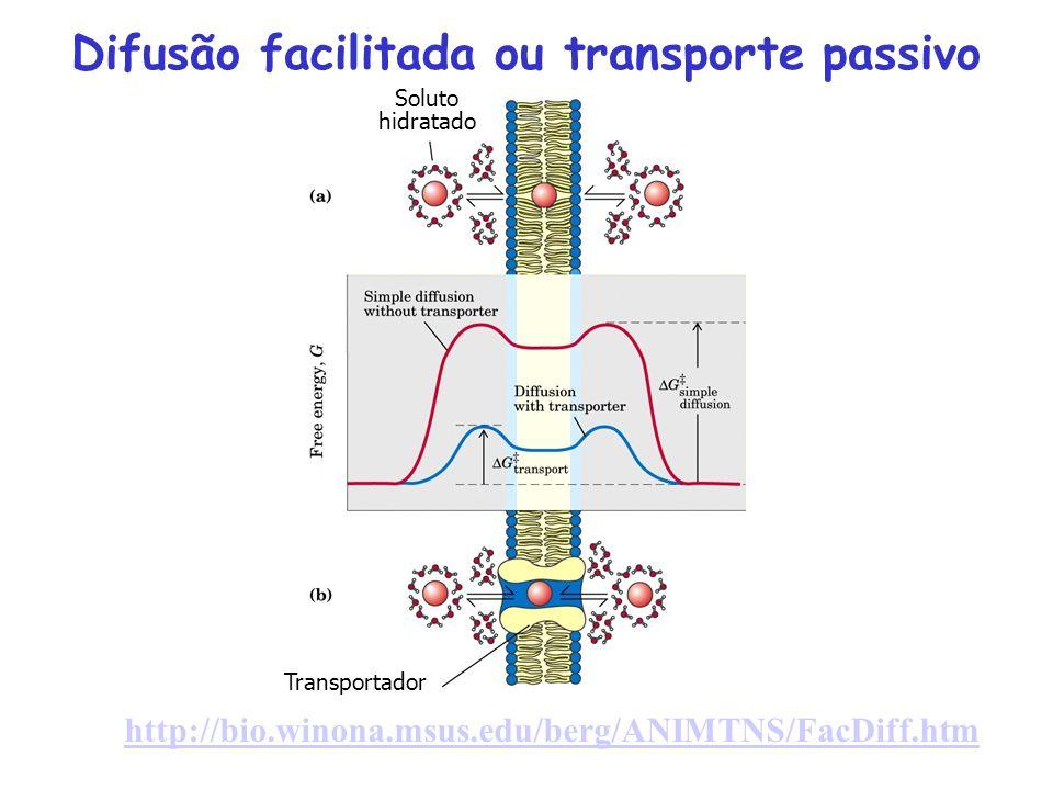 Difusão facilitada ou transporte passivo