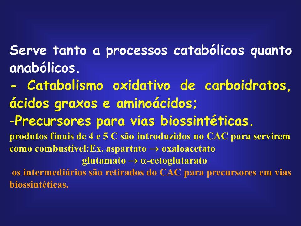 Serve tanto a processos catabólicos quanto anabólicos.