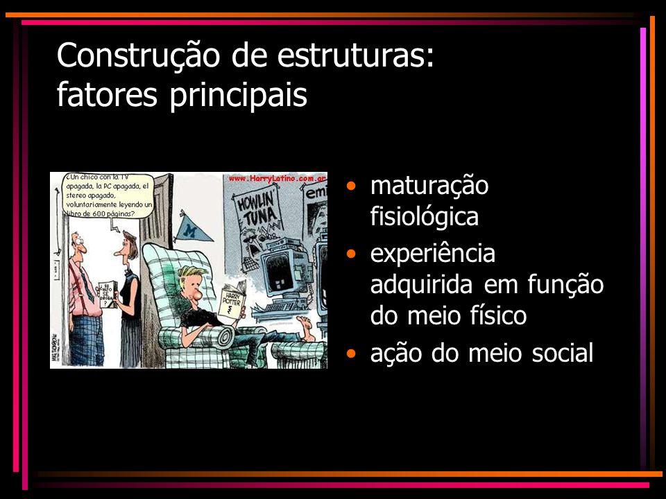 Construção de estruturas: fatores principais