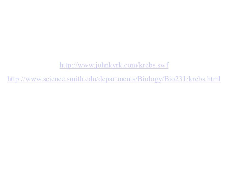 http://www.johnkyrk.com/krebs.swf http://www.science.smith.edu/departments/Biology/Bio231/krebs.html.