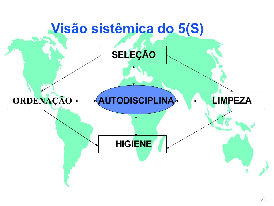 Visão sistêmica do 5(S) ORDENAÇÃO SELEÇÃO LIMPEZA HIGIENE