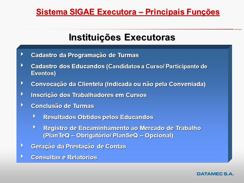 Instituições Executoras