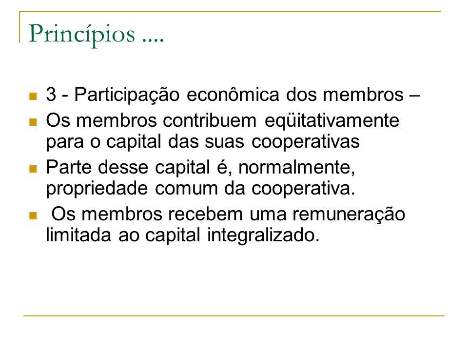 Princípios .... 3 - Participação econômica dos membros –