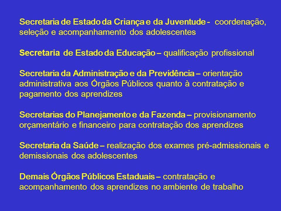 Secretaria de Estado da Criança e da Juventude - coordenação, seleção e acompanhamento dos adolescentes