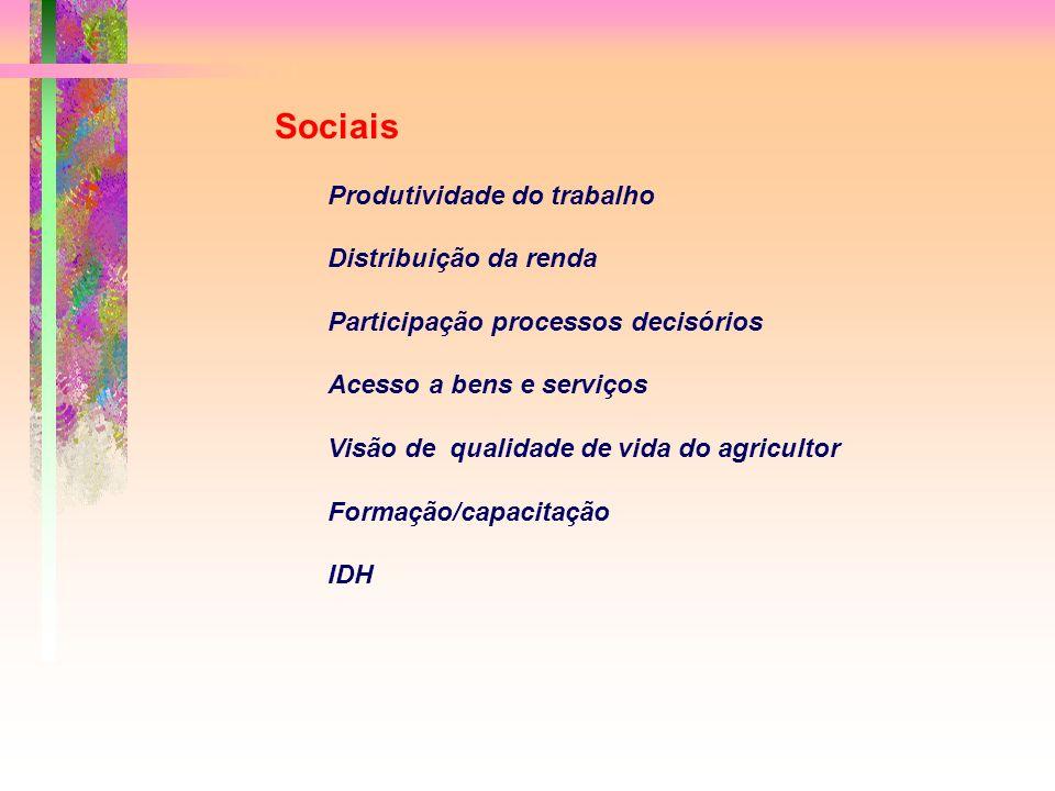 Sociais Produtividade do trabalho Distribuição da renda