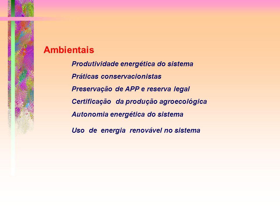 Ambientais Produtividade energética do sistema