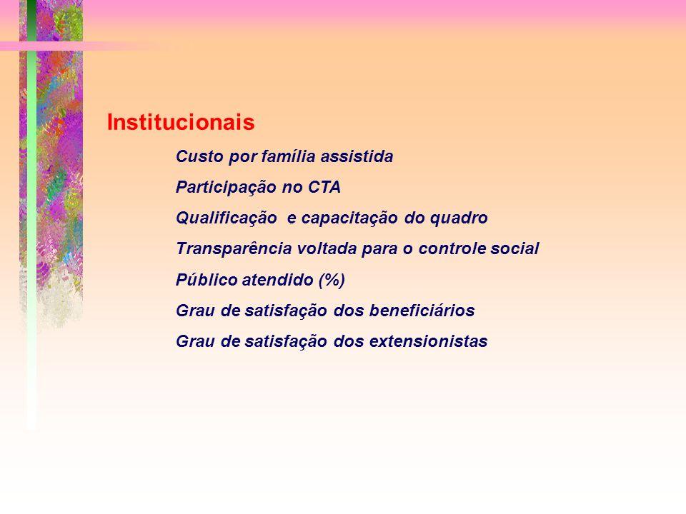 Institucionais Custo por família assistida Participação no CTA