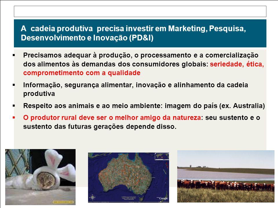 A cadeia produtiva precisa investir em Marketing, Pesquisa, Desenvolvimento e Inovação (PD&I)