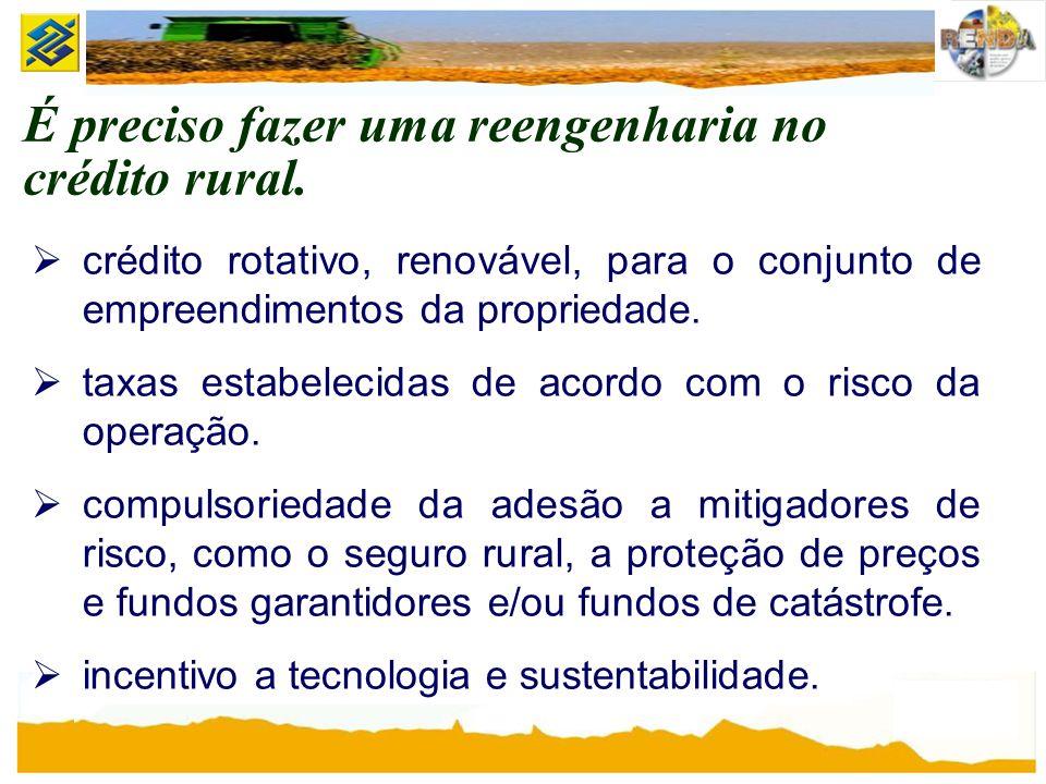É preciso fazer uma reengenharia no crédito rural.