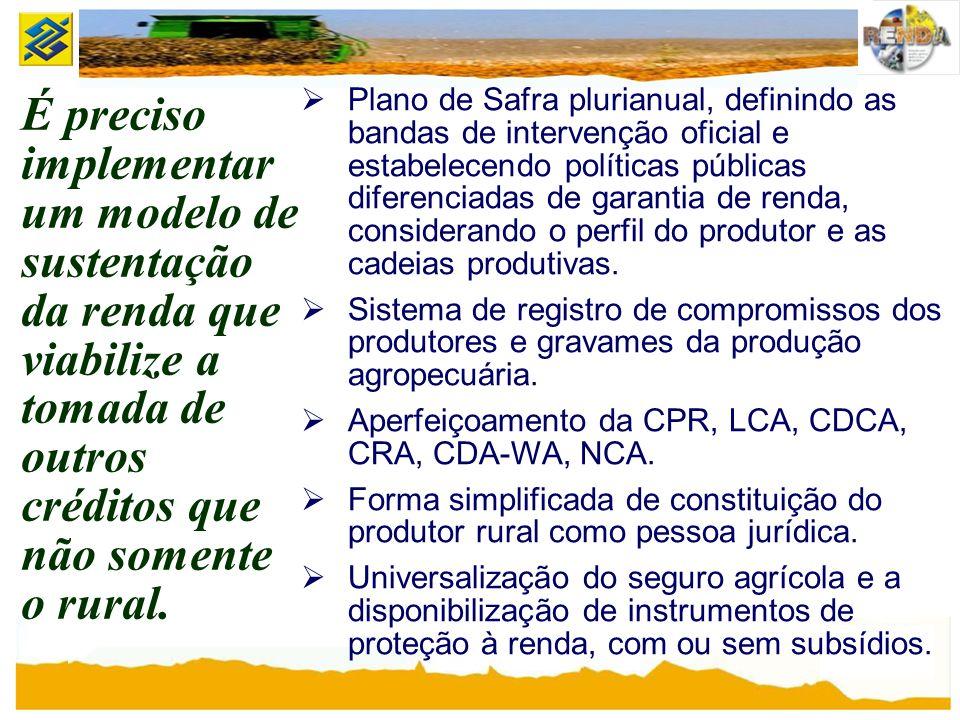Plano de Safra plurianual, definindo as bandas de intervenção oficial e estabelecendo políticas públicas diferenciadas de garantia de renda, considerando o perfil do produtor e as cadeias produtivas.