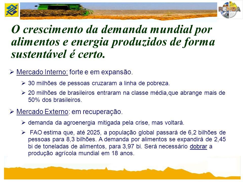 O crescimento da demanda mundial por alimentos e energia produzidos de forma sustentável é certo.