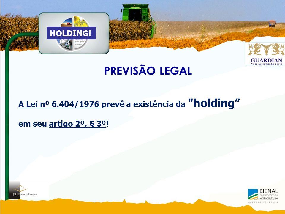 PREVISÃO LEGAL HOLDING!