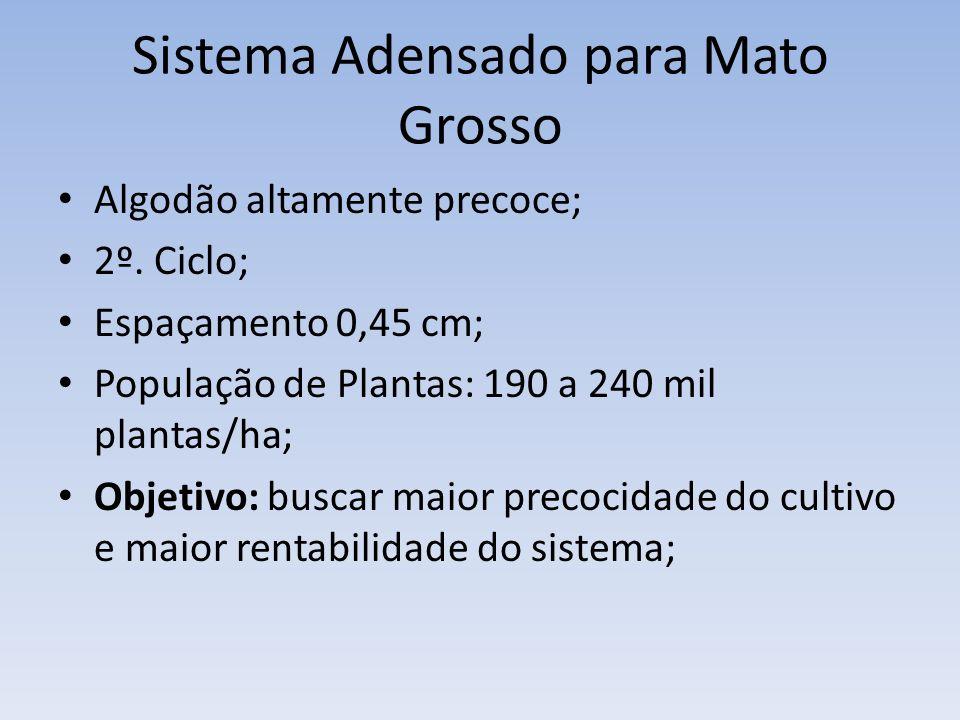 Sistema Adensado para Mato Grosso