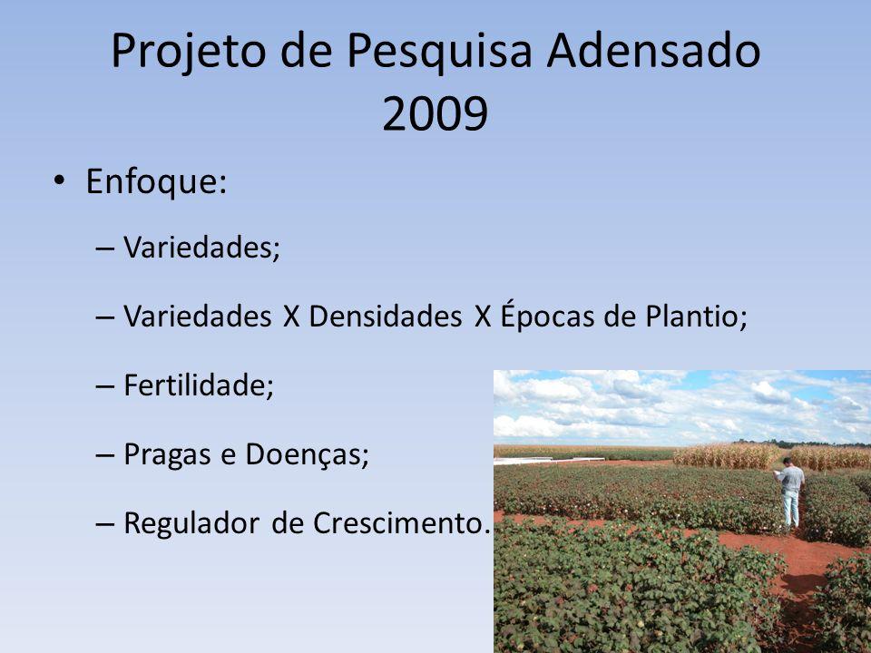 Projeto de Pesquisa Adensado 2009