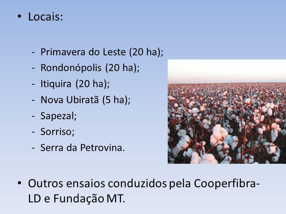 Outros ensaios conduzidos pela Cooperfibra-LD e Fundação MT.