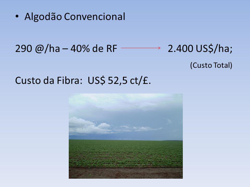 Algodão Convencional 290 @/ha – 40% de RF 2.400 US$/ha; (Custo Total) Custo da Fibra: US$ 52,5 ct/£.