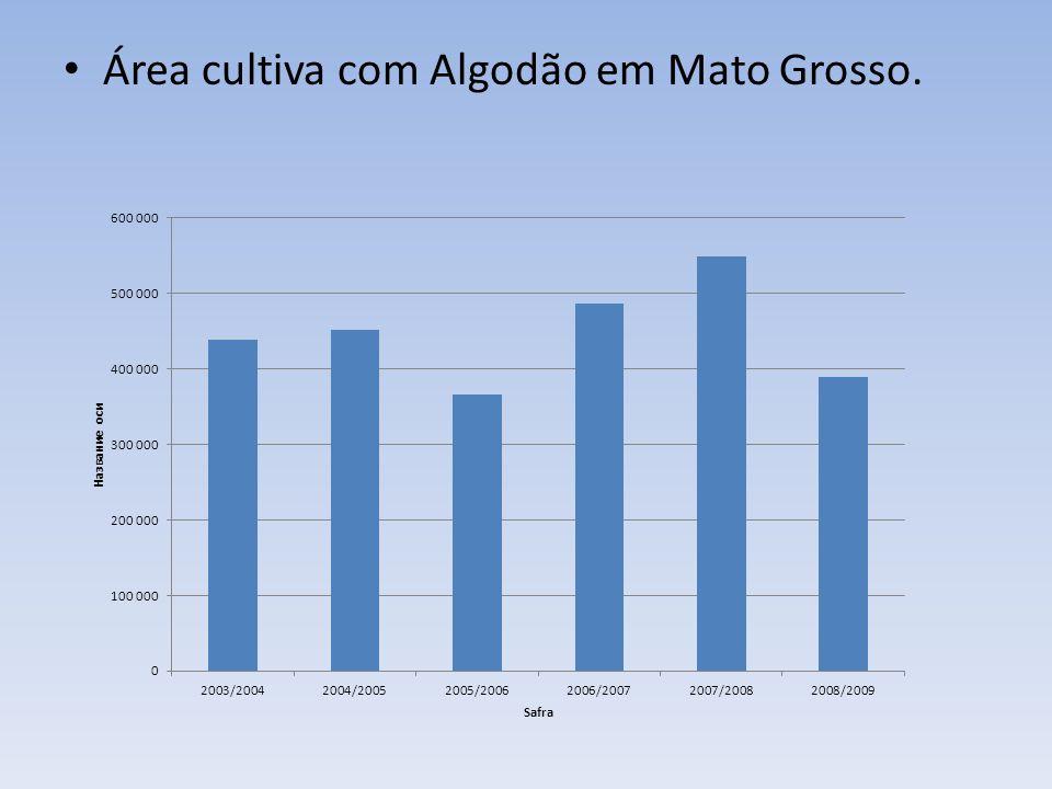 Área cultiva com Algodão em Mato Grosso.