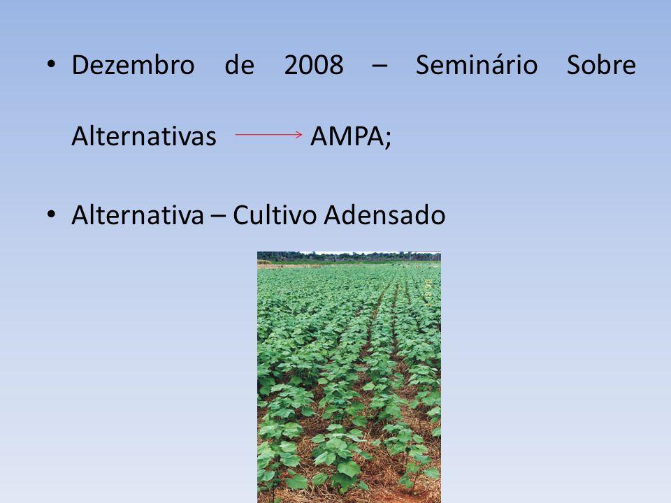 Dezembro de 2008 – Seminário Sobre Alternativas AMPA;