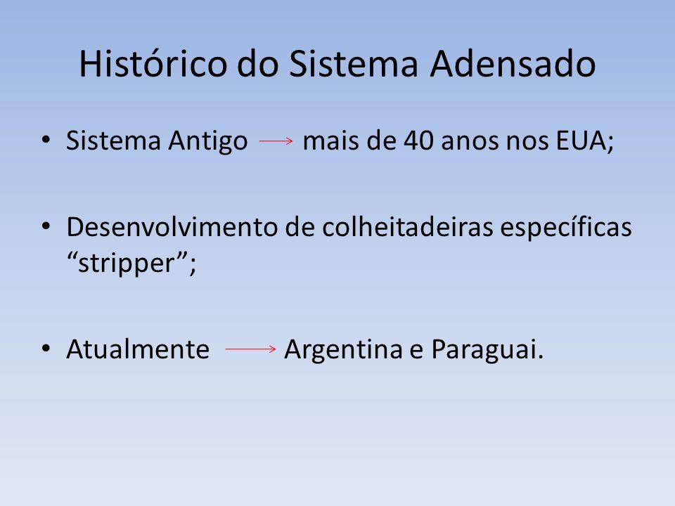 Histórico do Sistema Adensado