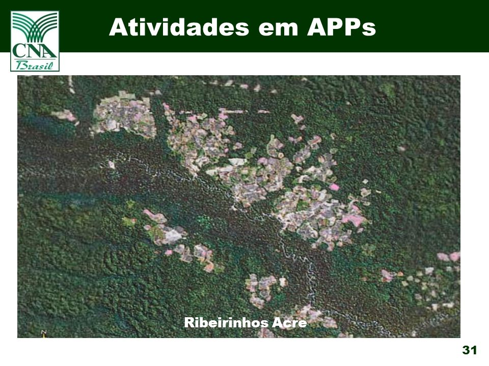 Atividades em APPs Ribeirinhos Acre