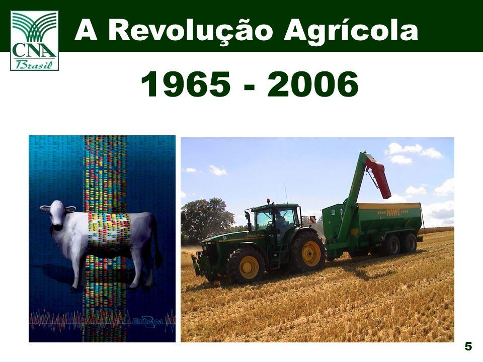 A Revolução Agrícola 1965 - 2006