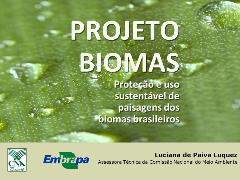 PROJETO BIOMAS Proteção e uso sustentável de paisagens dos biomas brasileiros