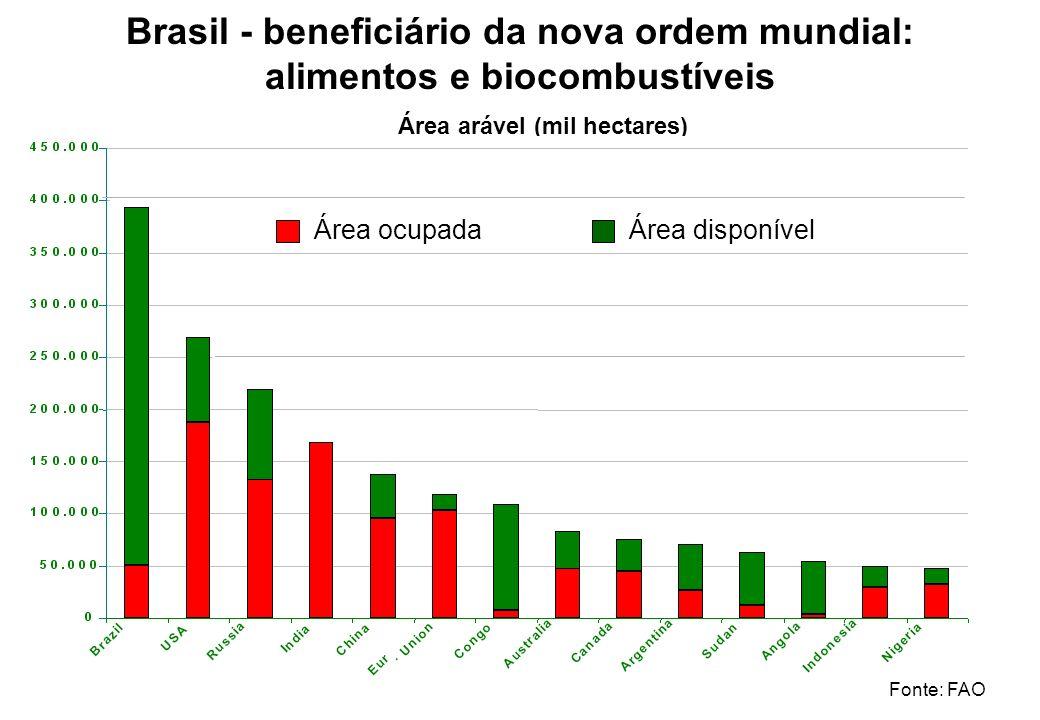 Brasil - beneficiário da nova ordem mundial: alimentos e biocombustíveis