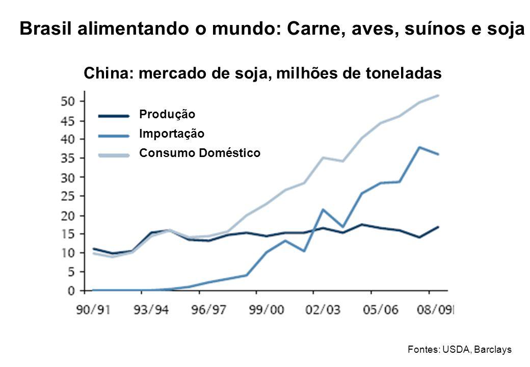 Brasil alimentando o mundo: Carne, aves, suínos e soja