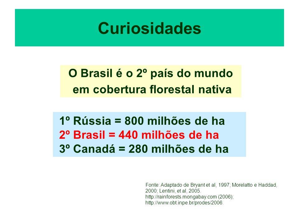 O Brasil é o 2º país do mundo em cobertura florestal nativa