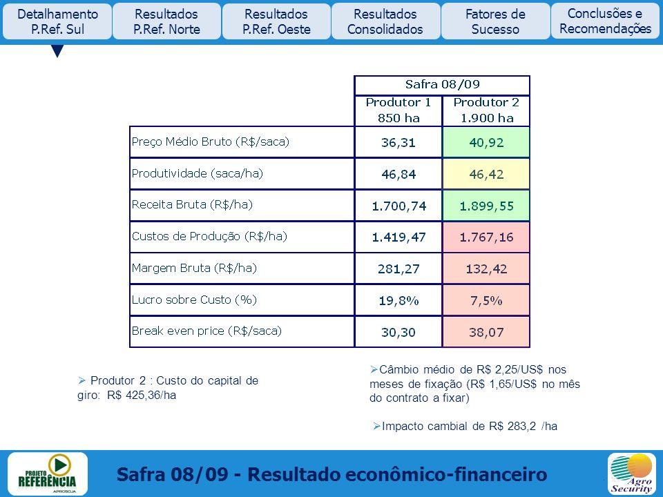 Safra 08/09 - Resultado econômico-financeiro