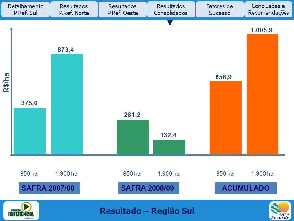 Resultado – Região Sul R$/ha SAFRA 2007/08 SAFRA 2008/09 ACUMULADO