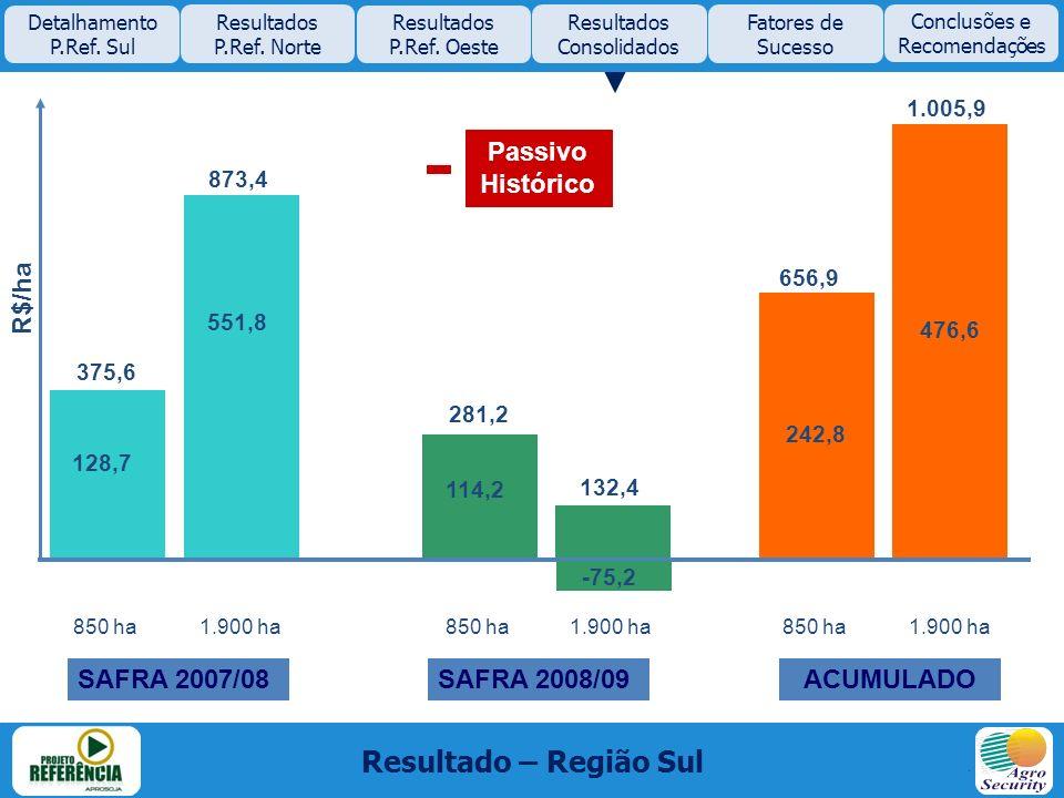 Resultado – Região Sul Passivo Histórico R$/ha SAFRA 2007/08